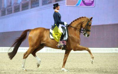 Quale staffa adatta per me ? Biomeccanica ed equitazione.